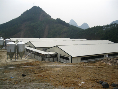 Light Steel Structure Pig Farm House