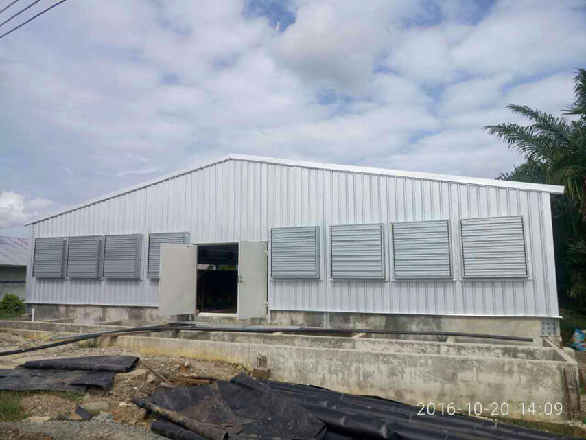broiler shed project in Philippines